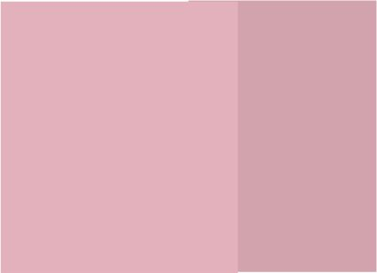 Rosa con rosa